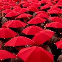 3340_red-umbrellas