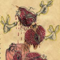 ilustración por Ania Pawlik