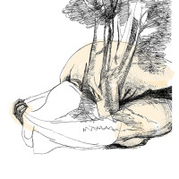 camila b ruiz - flores y otros descubrimientos