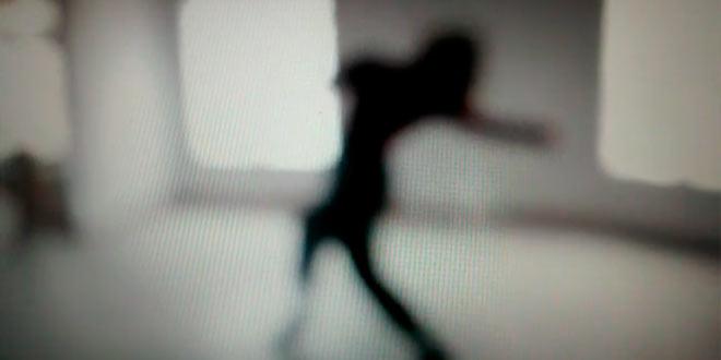 Procesos creativos: los cuerpos y la danza como punto de partida