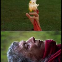 Linda Montano sueña pollitos-1