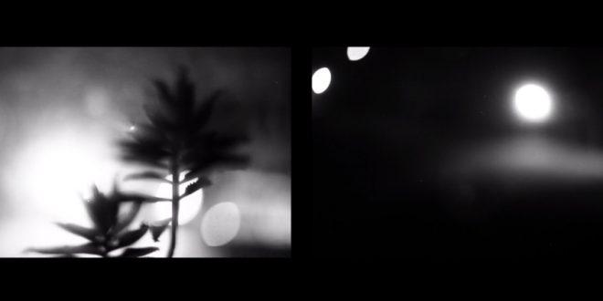 Murmuros – video por Dana Albicker Mendiola